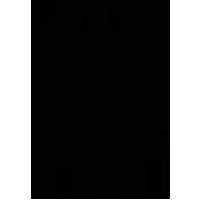 Nemesis Arms Logo